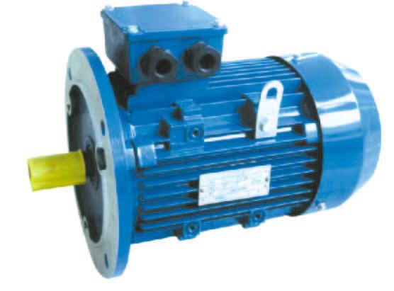 Manufacturer china electric motors china ac motors motori for Chinese electric motor manufacturers